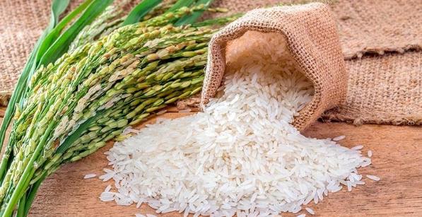 Користь рису